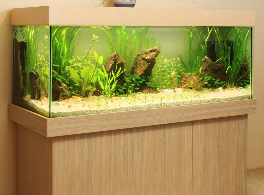 Madison, CT – Custom Aquarium Design – Salt Water Tank Maintenance