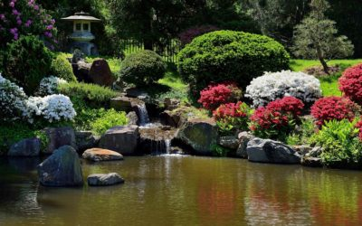 Connecticut Pond Repair, Maintenance, Cleaning | Best Pond & Water Feature Services in Hartford, CT