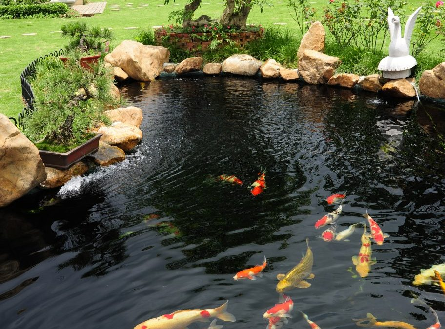 Pond Maintenance & Spring Opening Services – New London, Hartford, Stamford, CT