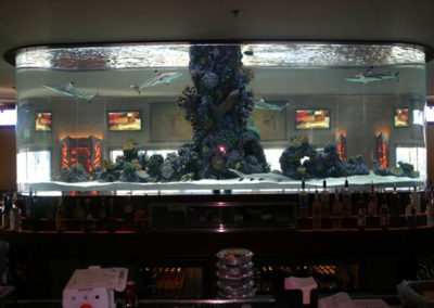 Custom Commercial Aquarium