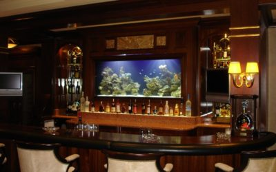 Southington, CT: Custom Aquariums & Fish Tank Installation Services in Waterbury, CT